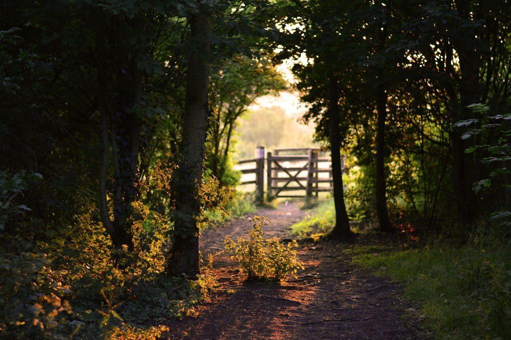 gate-155112_1920